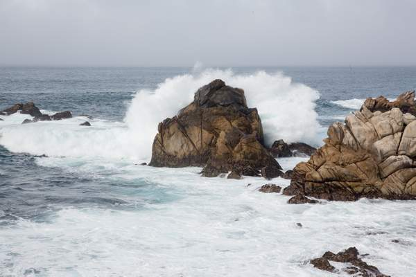 Point Lobos-3