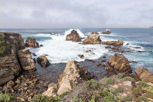 Point Lobos-2