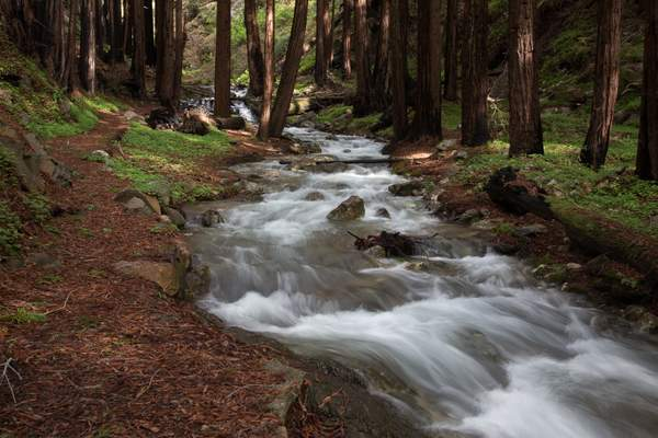 Limekiln State Park-13