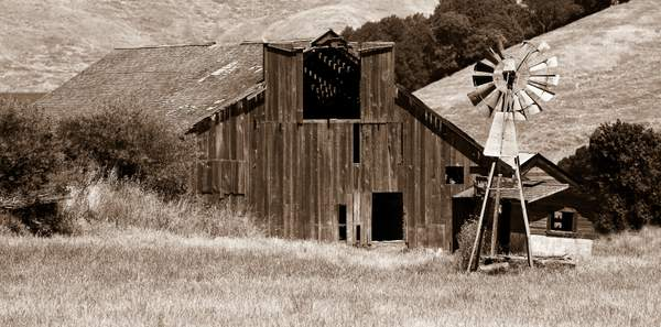Barn and Windmill Near Point Reyes