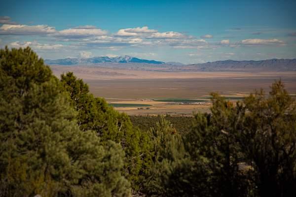 Great Basin NP-13