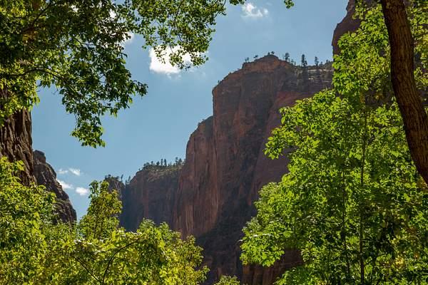 Zion Canyon-12