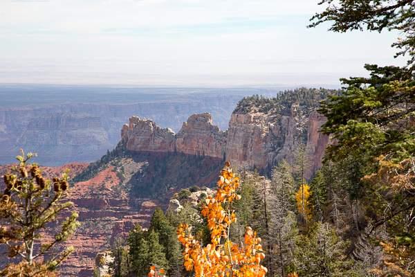 Grand Canyon North Rim-13