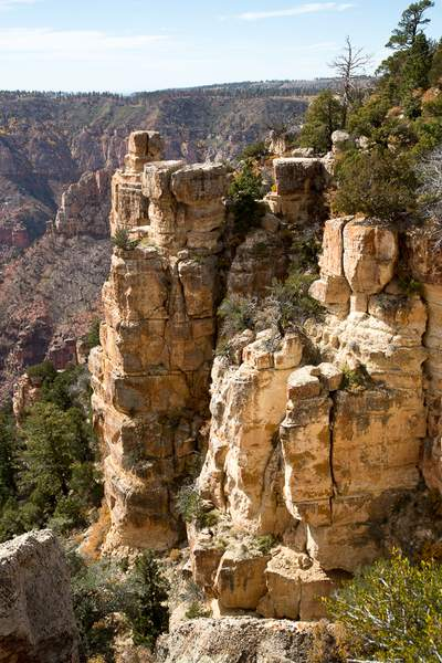 Grand Canyon North Rim-15