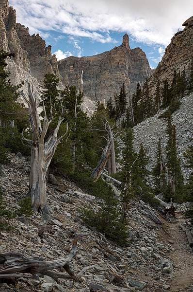 Great Basin NP-6