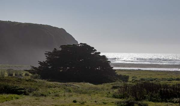Ragged Point CA-7