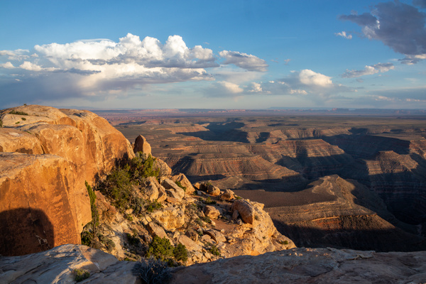 Muley Point Overlook at Sunset by Harrison Clark