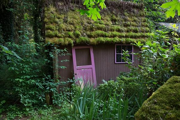 Cabin in the woods.jpg by Harrison Clark