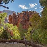 Zion (Canyon)