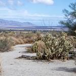 Anza Borrego Desert State Park CA 2019
