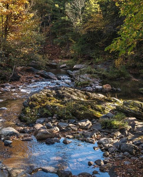 Berckshire River Scenes by MartinShook369