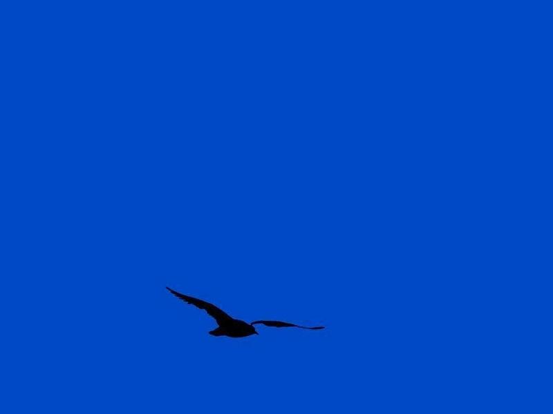 Passer au bleu...