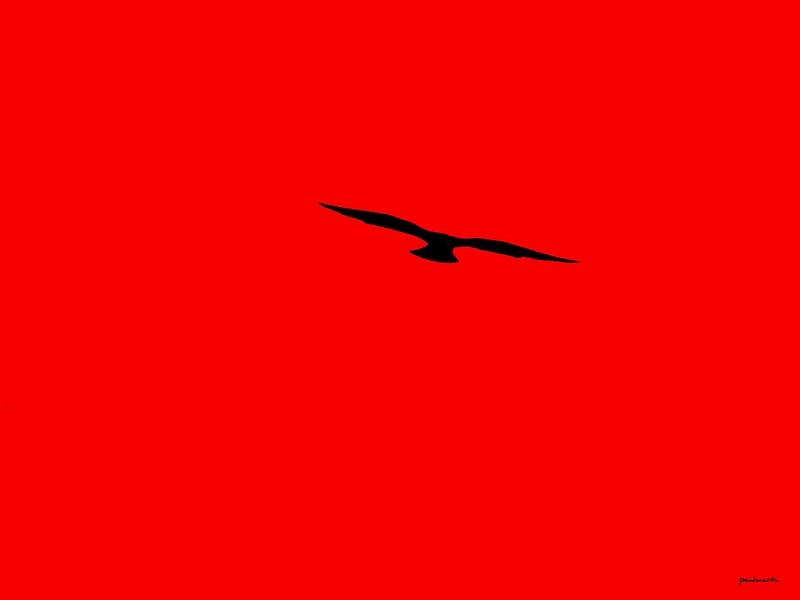 Dans le rouge...