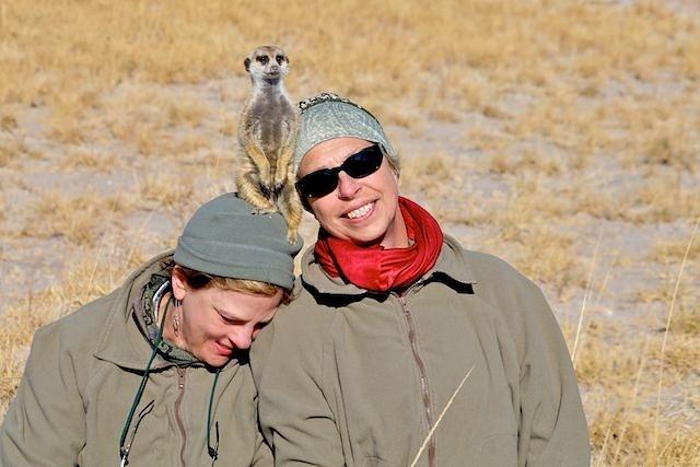 Meerkat Needs Extra Support