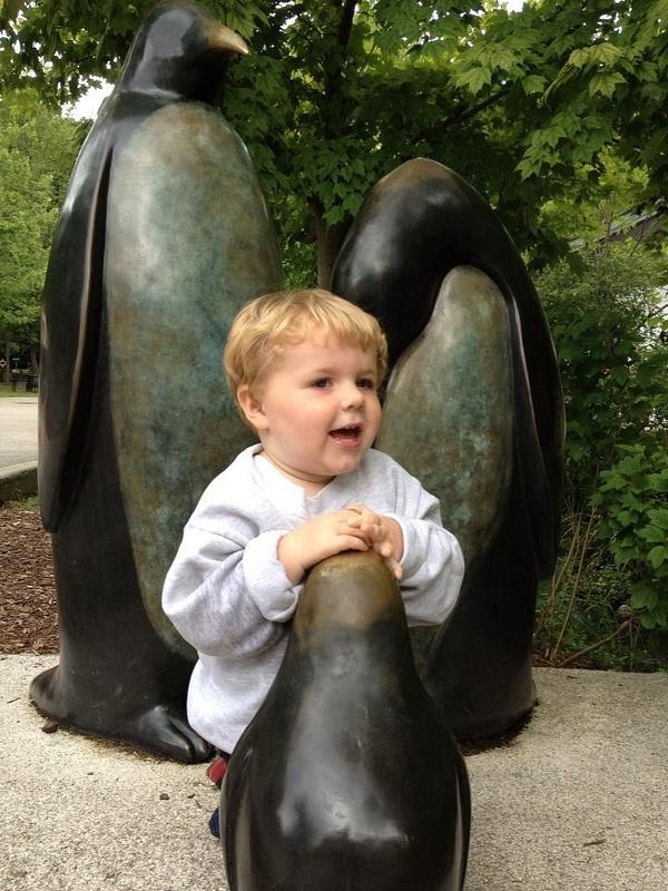 gavin penguin