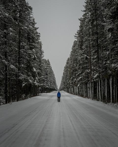 Alberta Alleyway