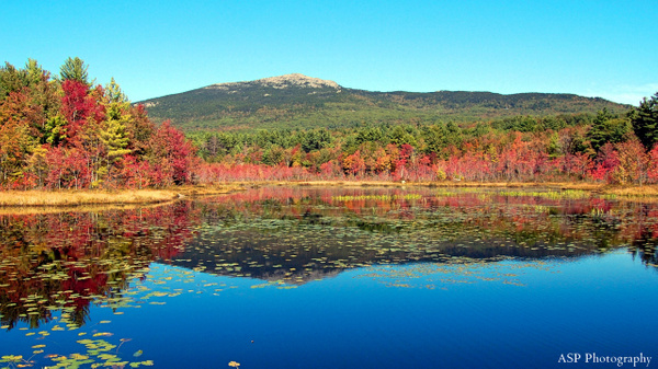 Mt Monad Fall and Wales Preserve Nikon 009-1 by...