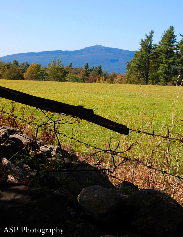 Mt Monad Fall and Wales Preserve Nikon 033-1