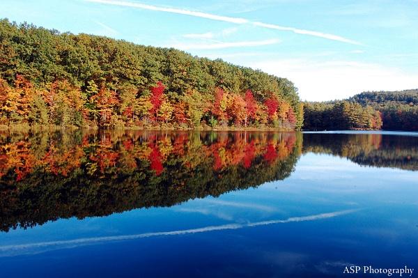 DSLR October 2013 007-1 by amysuephoto