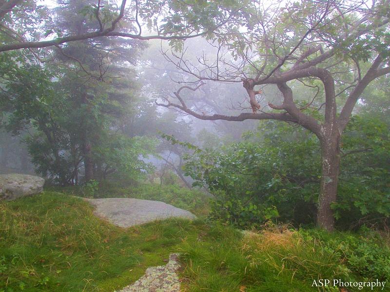 New York Vacation Overlook Mountain Dibbles Quarry Katarskill 069-1