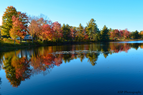 Fall Reflections, 2015 by amysuephoto by amysuephoto