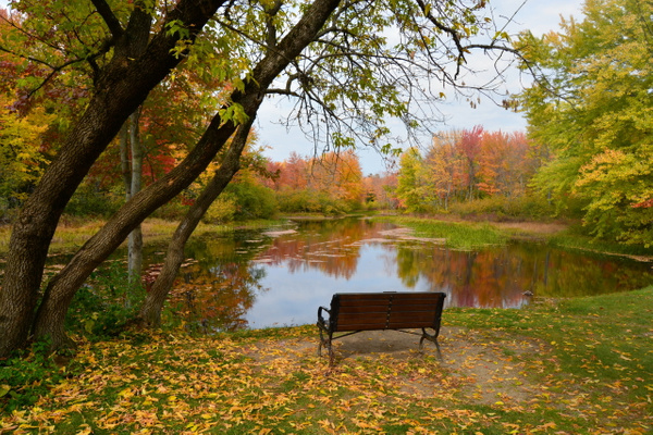 Ashuelot Park in Autumn 2016 by amysuephoto by amysuephoto