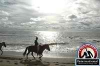 Carlos Fonseca, Managua, Nicaragua Lots Land  For Sale - Beach Front Community - Golf Course Lot by internationalrealestate