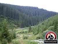 Borsec, Harghita, Romania Lots Land  For Sale - 24,7...