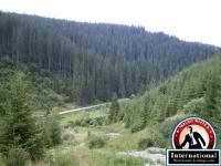 Borsec, Harghita, Romania Lots Land  For Sale - 24,7 Acres of Land and Forest