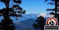 Thimphu, Thimphu, Bhutan Lots Land  For Sale - Tading Real Estate Enterprise
