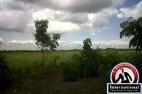 Daular, Guayas, Ecuador Farm Ranch  For Sale - Property...