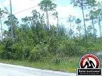 Freeport, Grand Bahama, Bahamas Lots Land  For Sale -...