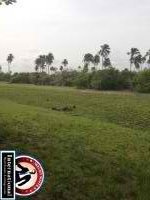 Lagos, Lagos, Nigeria Lots Land For Sale - Affordable  Land for Scale