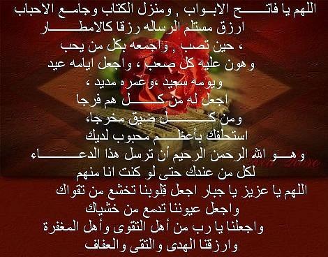 601018_2984155019265_698041356_n by Karim