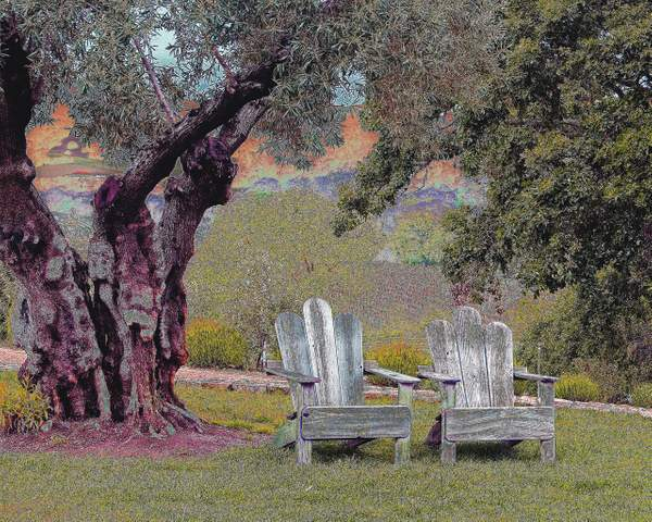 Sitting Place in Northern California's Wine Country
