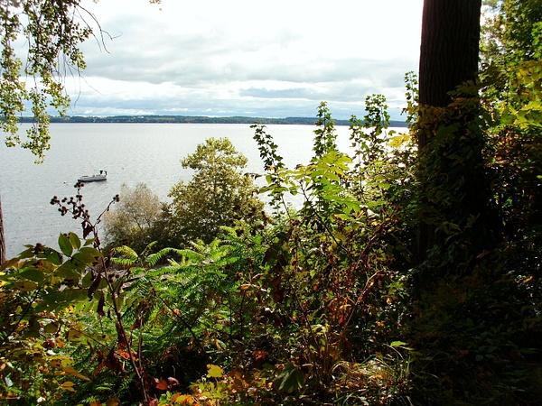 Seneca Lake from the Woods by DouglasGellatly