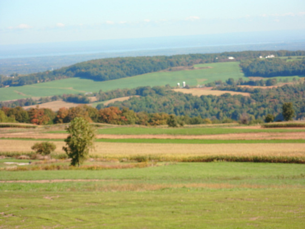 Cazinovia regiong (south of Syracuse) by DouglasGellatly