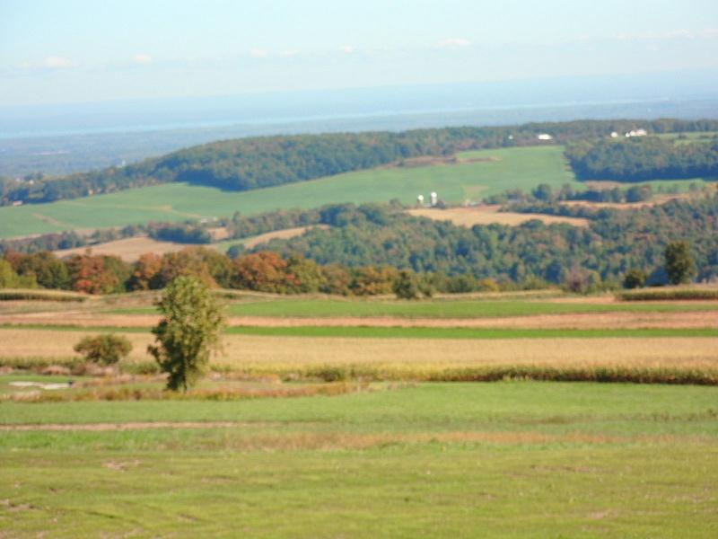 Cazinovia regiong (south of Syracuse)