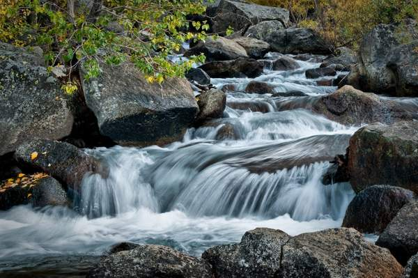 Stream in the Eastern Sierras