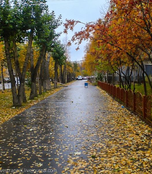 Сургут. Осень. by Vestrannik680