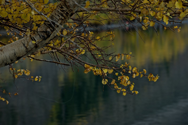 2013 ESOV Mono Lake-Astrophotography_55420__IBG6302 - Version 2