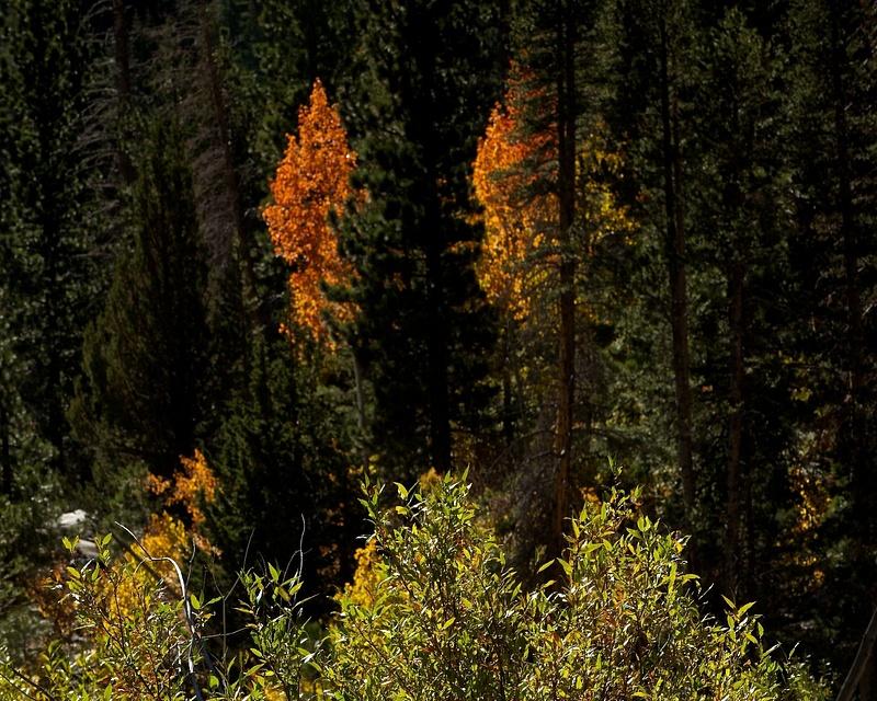 2013 ESOV Mono Lake-Astrophotography_55291__IBG6172 - Version 2
