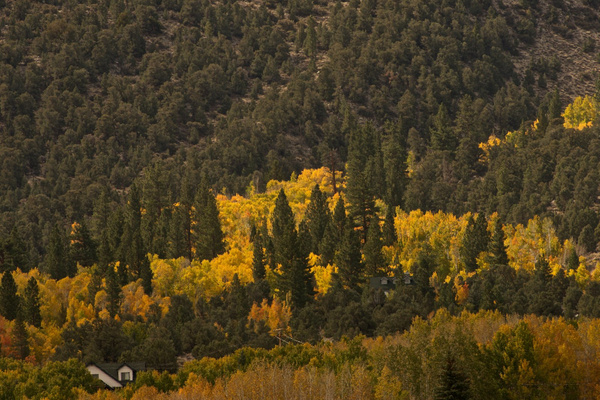 On The Way Home - Off 395 III by GregHughes