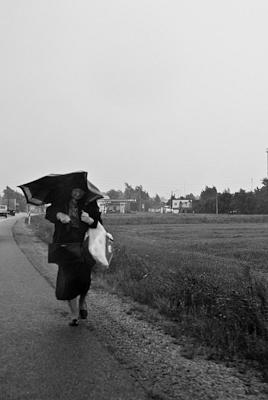DSC_0232 by Svetlana Punte