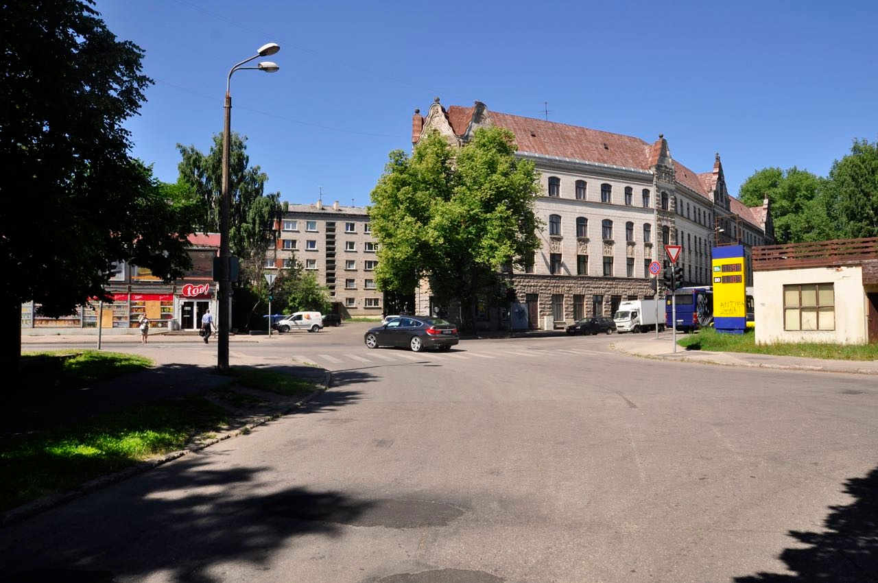 Svetlana Punte's Gallery