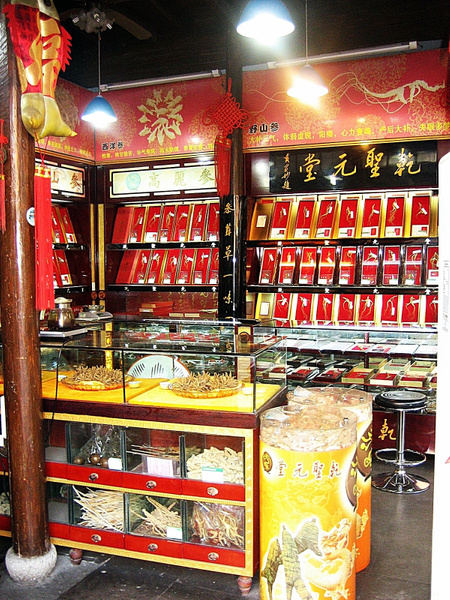 Hangzhou_GinsengPharmacy by StefsPictures