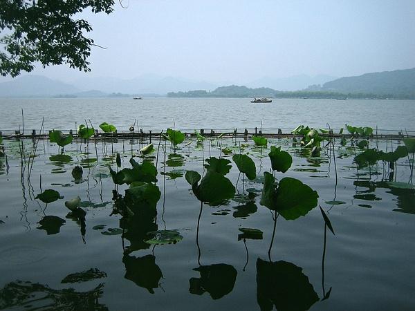Hangzhou_Westlake_Summer by StefsPictures