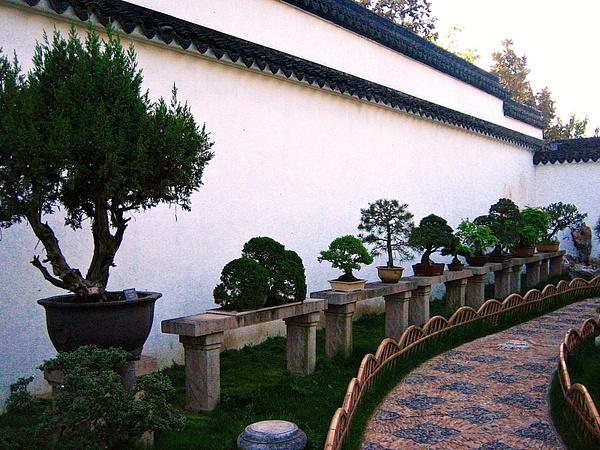 Suzhou ZhuozhengYuan 043 by StefsPictures