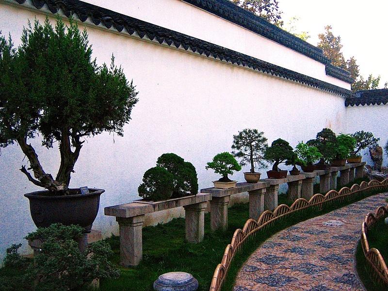 Suzhou ZhuozhengYuan 043