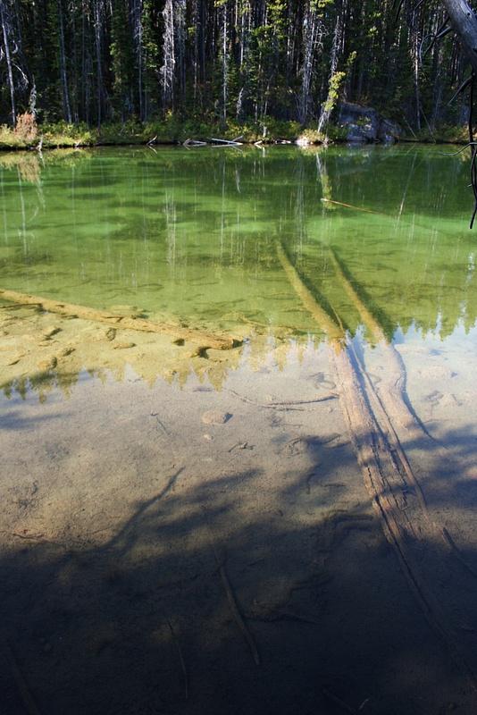 RM 438 Bow Lake